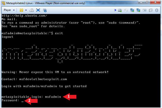 Metasploitable Project: Lesson 11: MySQL Bruteforce Password