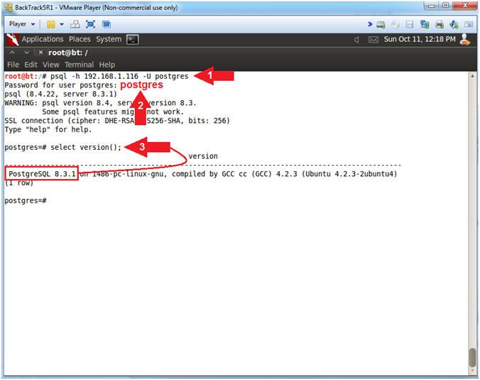 Metasploitable Project: Lesson 12: Postgres SQL Bruteforce, Obtain