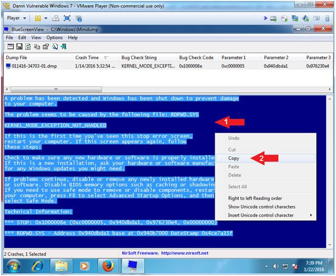 Metasploit: MS12-020: Kali 1 0: RDP Windows Exploit, Set Memory
